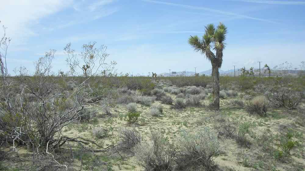 2 5 Ac Land By The 14 Freeway California City Mojave