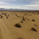 40 ACRE LAND FOR SALE LANCASTER LOS ANGELES COUNTY CALIFORNIA